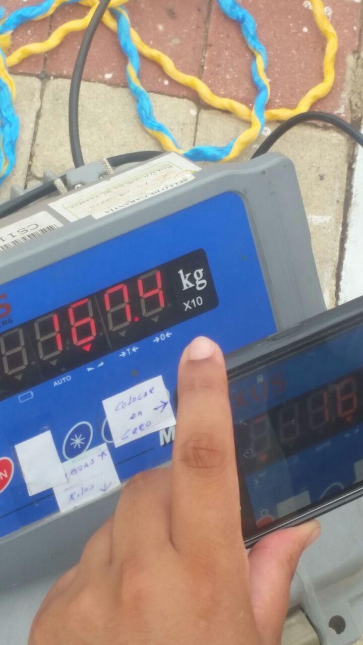 Pesaje del atún, ejemplar de mayor peso registrado en el torneo de pesca.