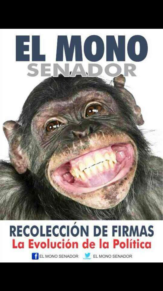 Publicidad de la campaña de El Mono.