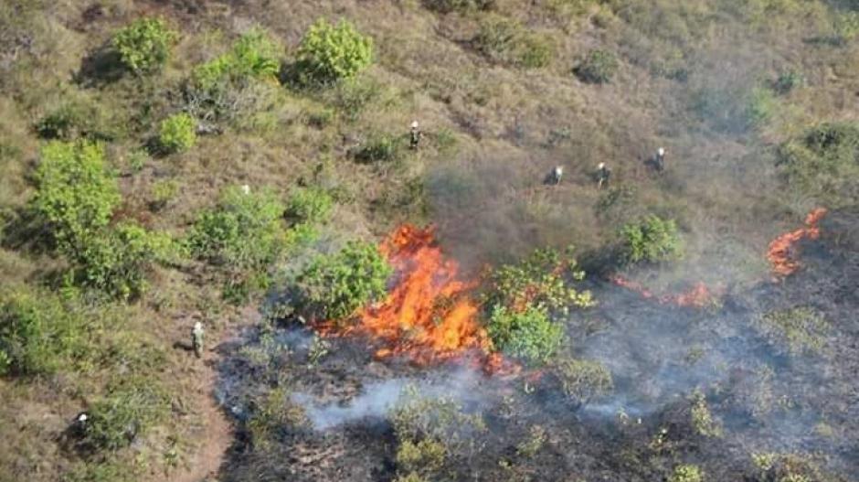 La Fuerza Aérea, el Ejército, la Defensa Civil, 106 bomberos y dos pelotones del batallón de riesgos trabajan para controlar el incendio.
