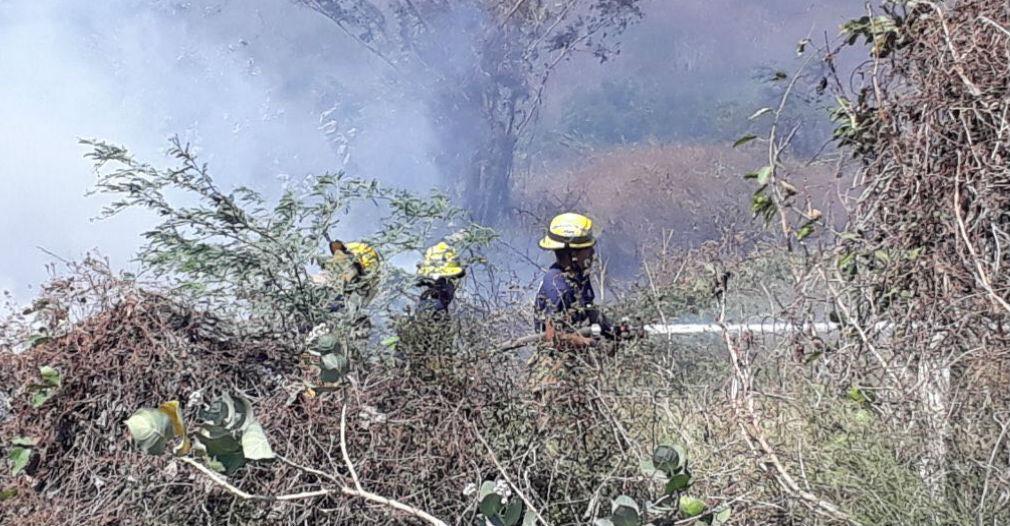 tres de los siete incendios fueron producidos por la quema de desechos