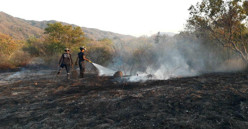 Incendio de cobertura vegetal.
