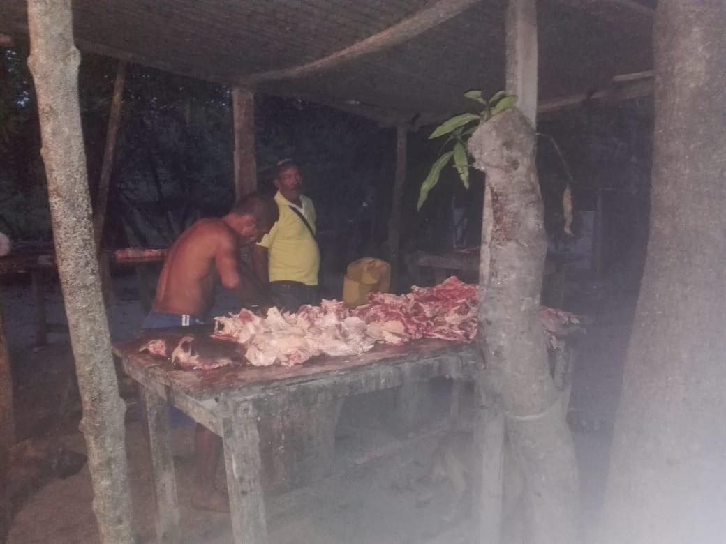 Matadero ilegal desmantelado en Algarrobo.
