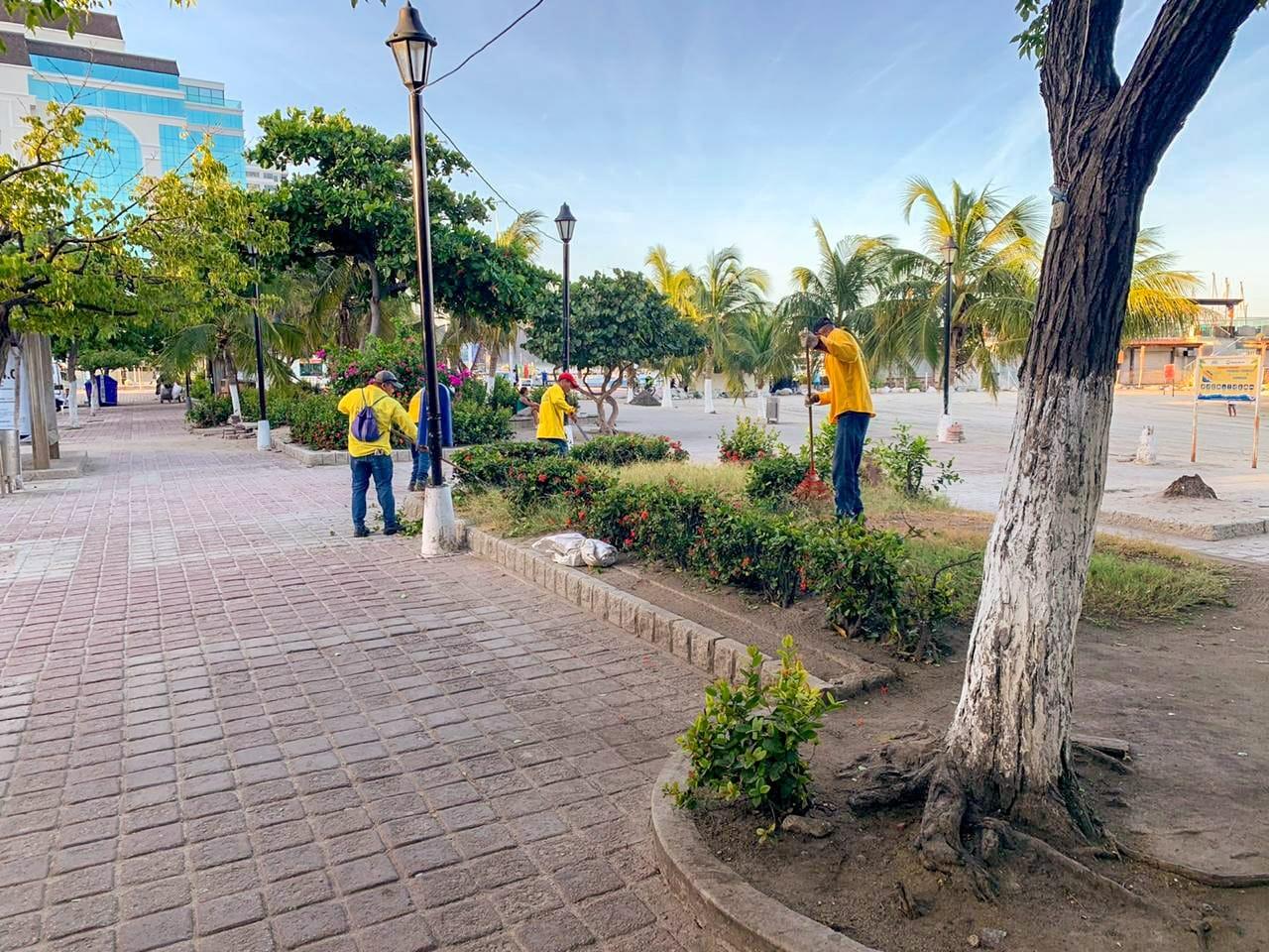 Limpieza de los jardines del camellón Rodrigo de Bastidas