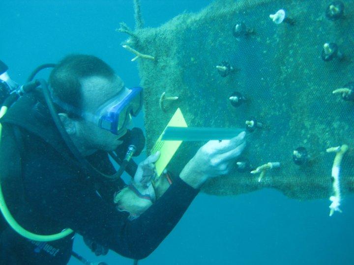 A través de la fundación Calipso, Nufar trabajaba incansablemente por los arrecifes en Taganga.