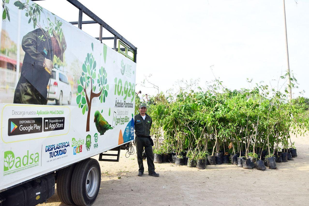 Con los 400 arboles de este lunes ya son 11.600 los sembrados en los últimos tres años.
