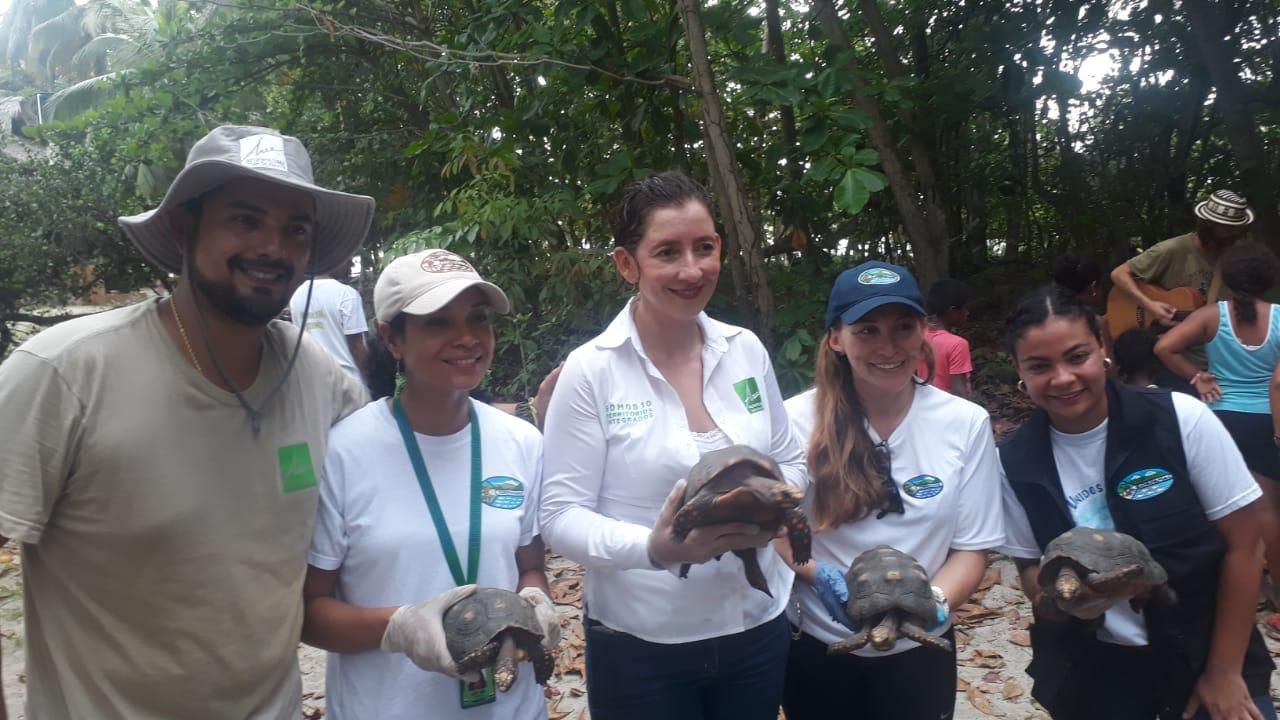 Los animales fueron liberados en Playa Bonita