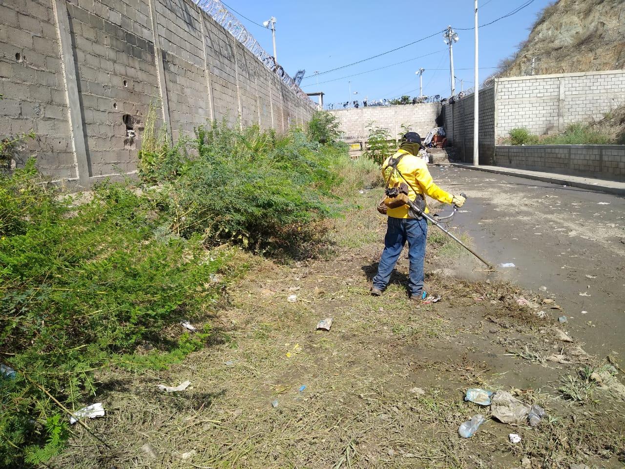 Jornada de limpieza en el sector de El Boro