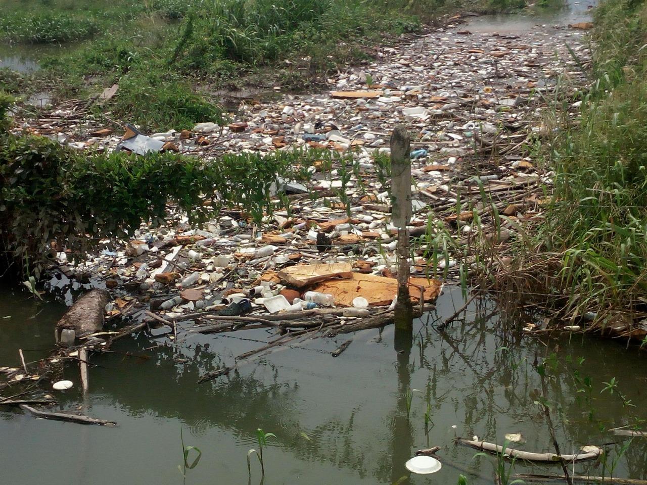 Las basuras de un lote vecino estarían siendo arrastradas hasta el canal.