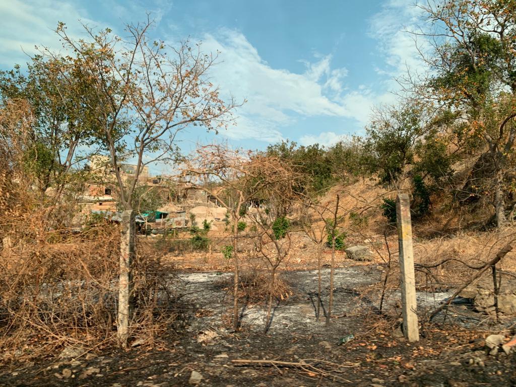 Según denuncian, estarían quemando estos ecosistemas para construir sin permisos.