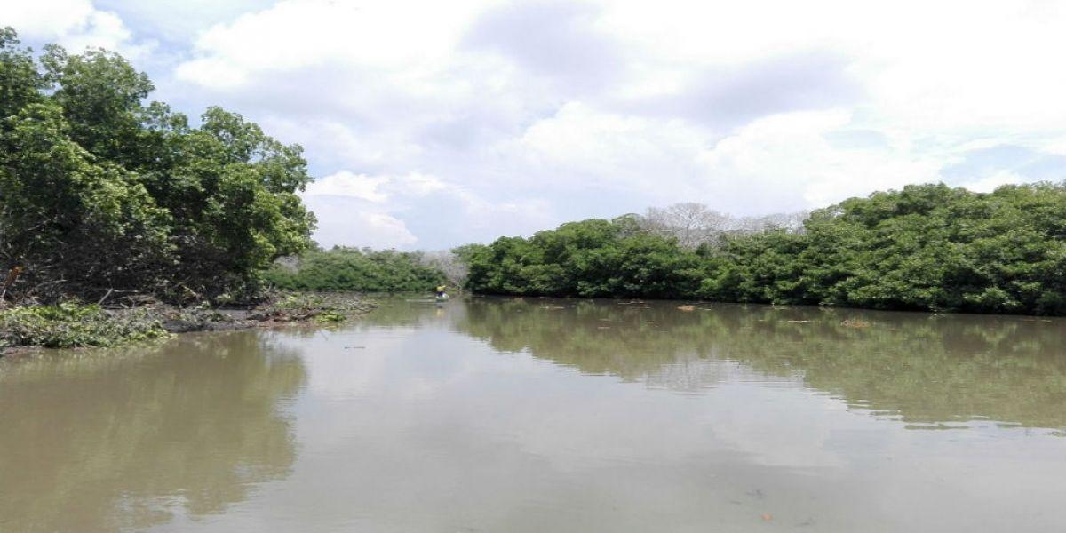 Caño Pajaral