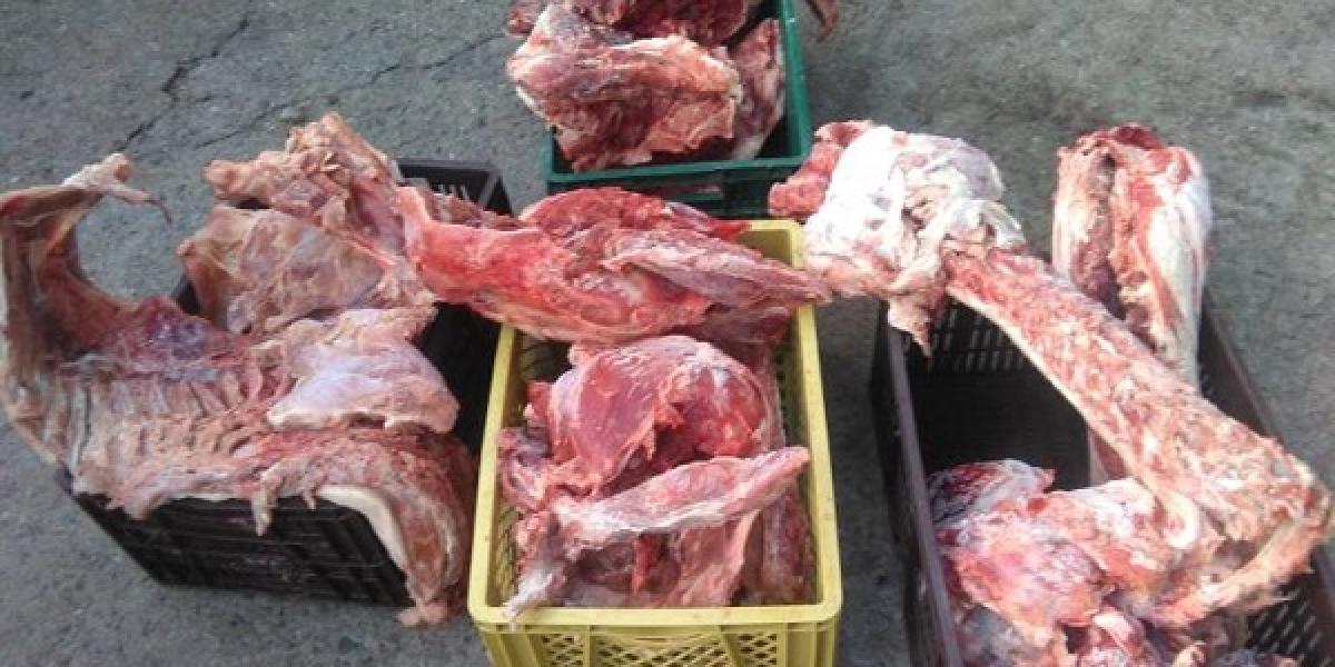 Carne podrida