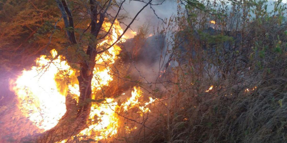 Incendio cerca a la cancha de fútbol de Gaira.