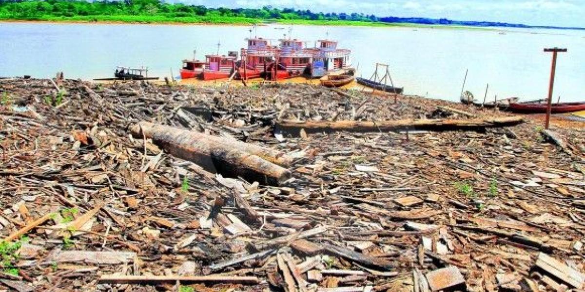 La selva talada está generando consecuencias ambientales, sobre todo en precipitaciones.