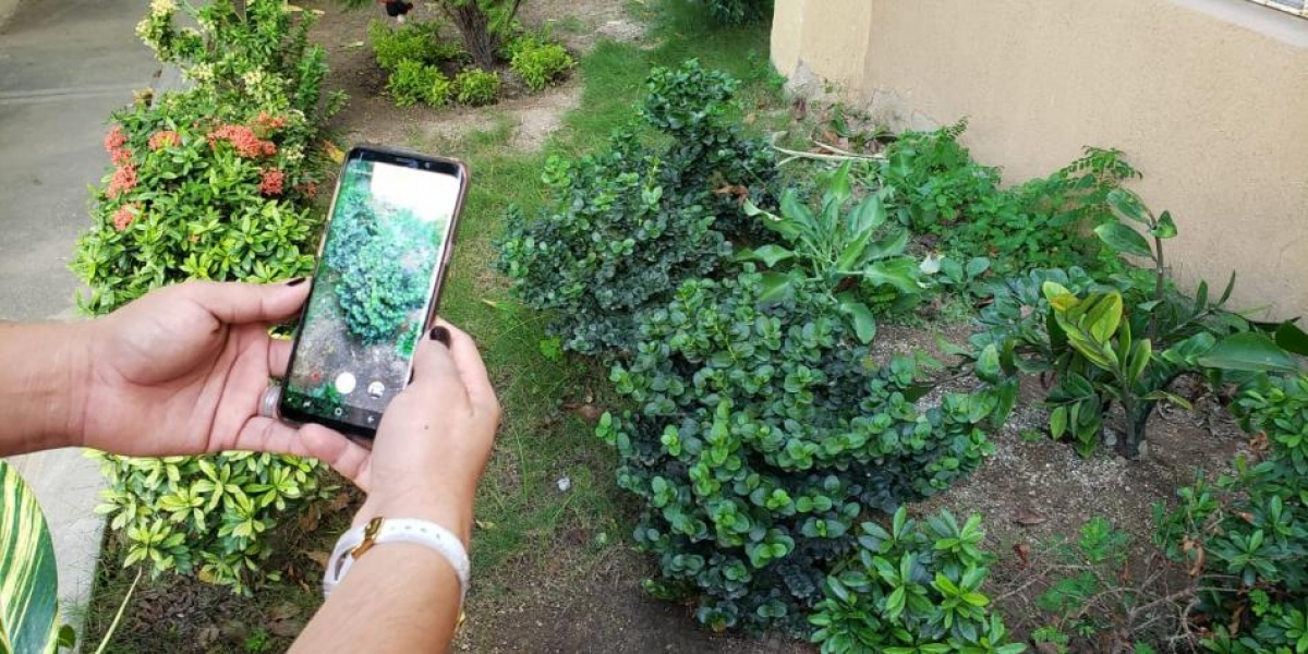 La herramienta tecnológica ya se ha implementado con éxito Cali y Cúcuta.