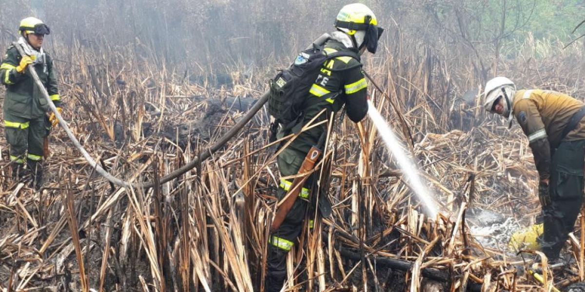 25 unidades pertenecientes a la Policía de Operaciones Especiales en Emergencias y Desastres (Ponalsar) apoyan las labores para controlar el incendio.