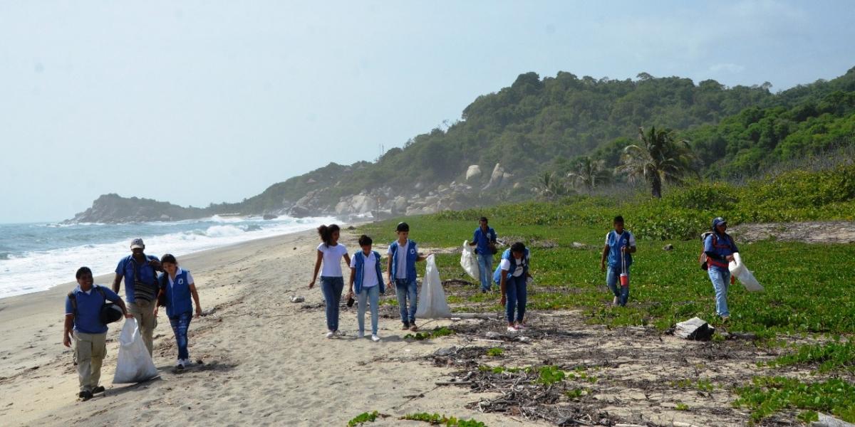 Los estudiantes están vinculados a las acciones de conservación en el Parque Tayrona.