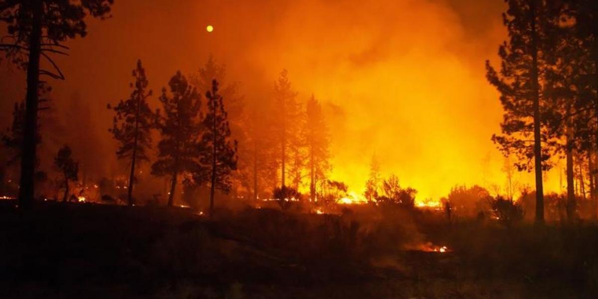 El incendio Carr.