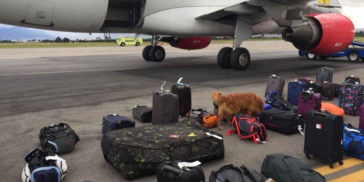 Momentos en que realizaban las inspección de los equipajes.