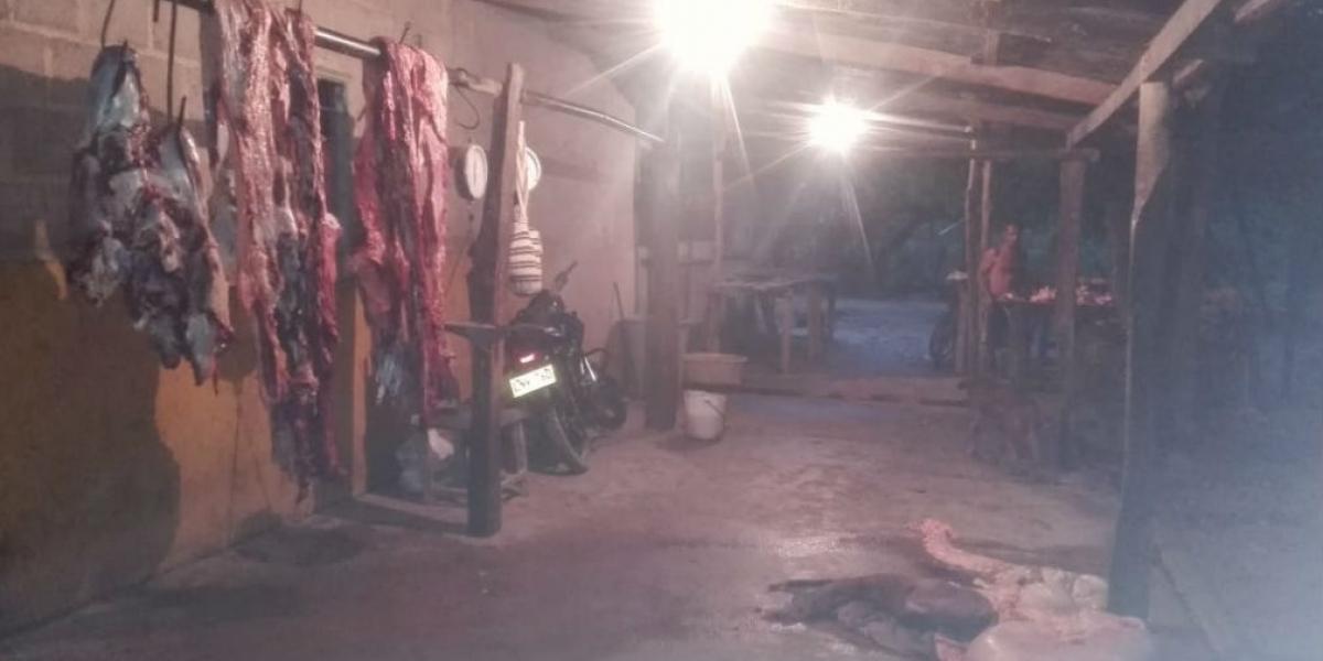 Matadero ilegal en Algarrobo, Magdalena.