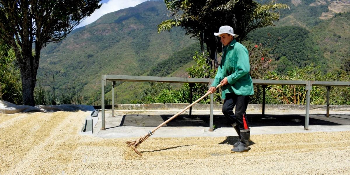 Con esta inversión, superior a los 2.160 millones de pesos, se logrará favorecer a 2.954 productores de 19 municipios del Magdalena.