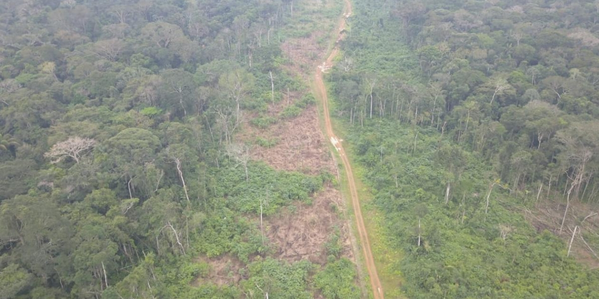 Deforestación en Guaviare.