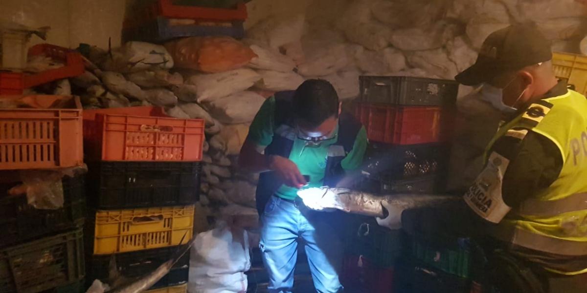 Operativos de control a establecimientos de pescados y mariscos
