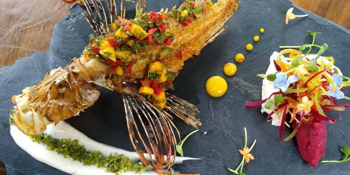 Pez leon en salsa de chimichurri, uno de los platos que se podrán degustar