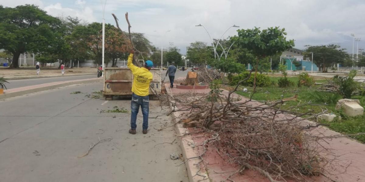 Trabajadores limpiando los alrededores de los escenarios deportivos.