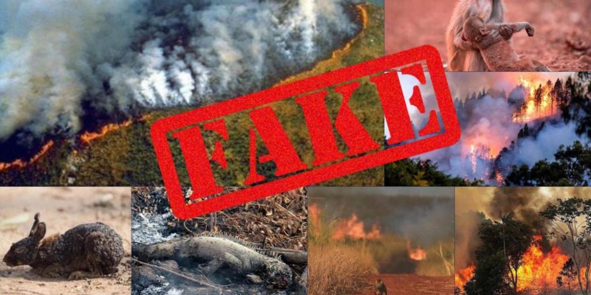Ninguna de estas fotos corresponde a la Amazonía en llamas.