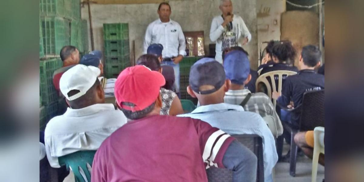 Durante la actividad, también se capacitaron a los agricultores en inspección, vigilancia y manejo de las enfermedades que pueden padecer el cultivo de guayaba.