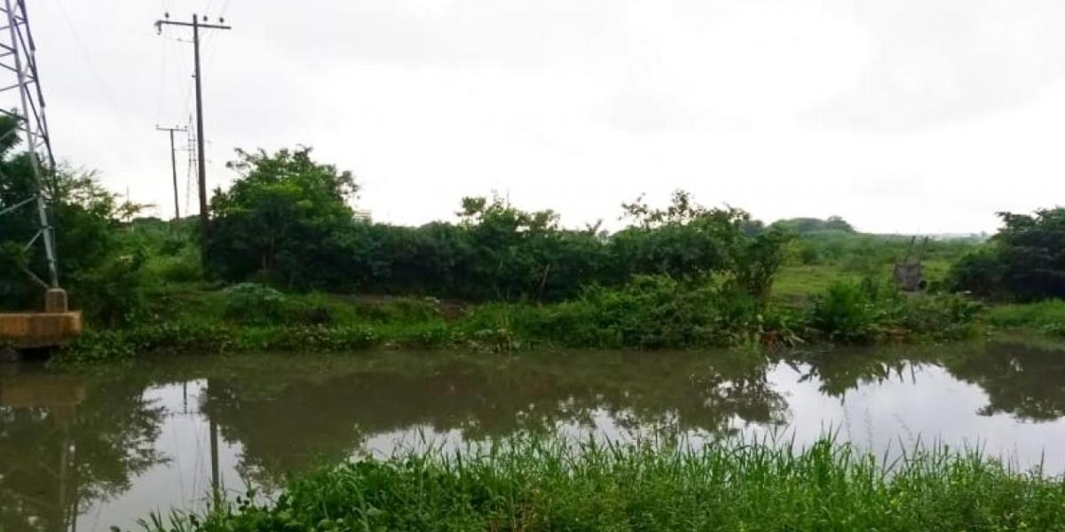 Caño de la Auyama.
