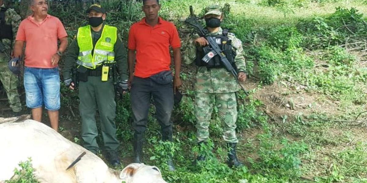 Los detenidos se disponían a sacrificar una res de manera ilegal.