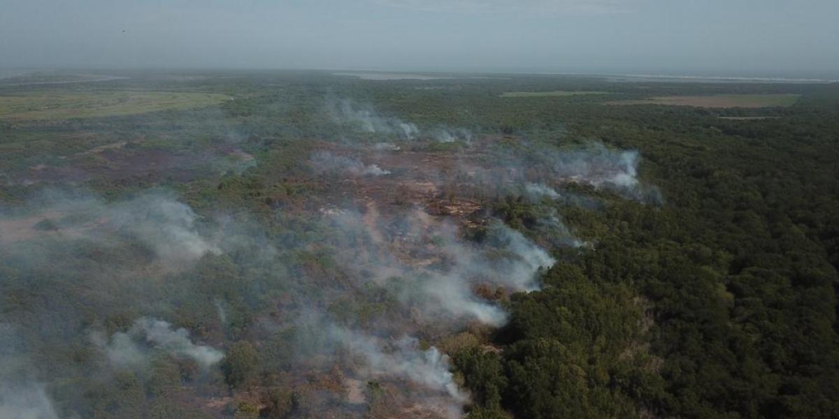 Incendio en el Vía Parque Isla de Salamanca.