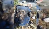 Así apareció el contenedor de basura de la calle 30.