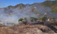 Debido a las fuertes brisas el incendio logró propagarse con rapidez dificultando las labores de supresión.