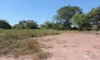 Este es el terreno donde se construiría la sede sur de Unimagdalena en El Banco.