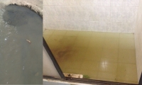 Comunidad de Bastidas dice que ya no les llega agua potable si no aguas servidas.