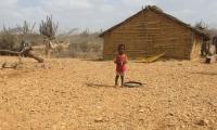 Según el informe, en Colombia 13,2 de cada 100 niños y niñas presentan retraso en el crecimiento –desnutrición crónica-.