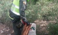El recién nacido fue encontrado dentro de una nevera de icopor, cerca de la laguna de oxidación del municipio de Hatonuevo.