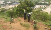 Operativos de recuperación de 400 metros del cerro de 'La Llorona' en el sector de la Troncal de Caribe.