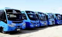 Busetas de transporte público.