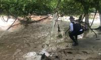 Se mantiene la alerta roja en los ríos que bajan de la Sierra Nevada de Santa Marta.