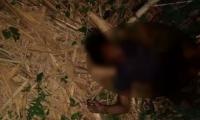 Los cuerpos fueron hallados sin vida, uno con dos impactos de bala y otro en el interior de un caño.