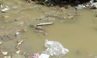 El Río Manzanares es uno de símbolos de la contaminación en Santa Marta.
