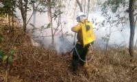 Bomberos trabajan para controlar la conflagración.