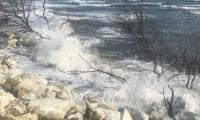 Estudios realizados en la zona determinaron un hecho concreto: no se puede seguir peleando con el mar.