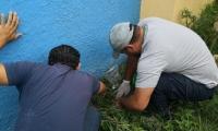 57 caracoles africanos fueron encontrados en Gaira.