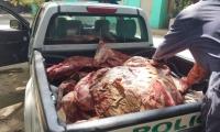 Carne decomisada en Fundación, Magdalena.