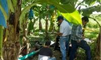 Aspecto de las jornadas desarrolladas con la colaboración de Augura en los predios bananeros del Magdalena.