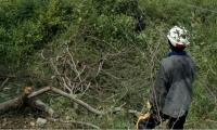 El robo de cables se ha registrado en la zona rural de Cerro de San Antonio.